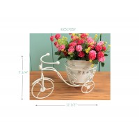 BICYCLE  PLANT STAND, 12.5""